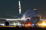 羽田空港 - Tokyo International Airport [HND/RJTT]で撮影されたドバイ・ロイヤル・エア・ウィング - Dubai Royal Air Wing [DUB]の航空機写真