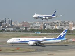 わたくんさんが、福岡空港で撮影した全日空 787-9の航空フォト(飛行機 写真・画像)