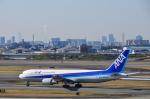 パンダさんが、伊丹空港で撮影した全日空 767-381の航空フォト(写真)