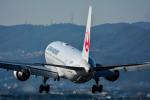 パンダさんが、伊丹空港で撮影した日本航空 767-346の航空フォト(写真)