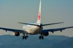 パンダさんが、伊丹空港で撮影した日本航空 737-846の航空フォト(写真)