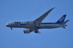 tsubasa0624さんが、羽田空港で撮影した全日空 787-8 Dreamlinerの航空フォト(写真)
