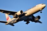 tsubasa0624さんが、羽田空港で撮影した日本航空 777-246/ERの航空フォト(飛行機 写真・画像)