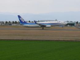 コヤシュウさんが、佐賀空港で撮影した全日空 737-881の航空フォト(飛行機 写真・画像)