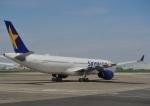 じーく。さんが、羽田空港で撮影したイントレピッド・アヴィエーション・パートナーズ A330-343Xの航空フォト(飛行機 写真・画像)