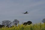 kumagorouさんが、福岡空港で撮影したスターフライヤー A320-214の航空フォト(飛行機 写真・画像)