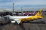 うめやしきさんが、高雄国際空港で撮影したバニラエア A320-214の航空フォト(飛行機 写真・画像)