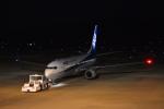 Q400さんが、福島空港で撮影した全日空 737-881の航空フォト(写真)