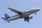 ANA744Foreverさんが、羽田空港で撮影した全日空 A320-211の航空フォト(写真)