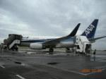 アドリア海さんが、石垣空港で撮影した全日空 737-781の航空フォト(写真)
