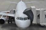 kumagorouさんが、岡山空港で撮影した全日空 A320-211の航空フォト(写真)