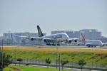 Flying Elvisさんが、ロサンゼルス国際空港で撮影したシンガポール航空 A380-841の航空フォト(写真)
