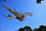 Flying Elvisさんが、ロサンゼルス国際空港で撮影したエミレーツ航空 A380-861の航空フォト(写真)