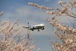 hkg blue skyさんが、成田国際空港で撮影した全日空 767-381/ERの航空フォト(飛行機 写真・画像)