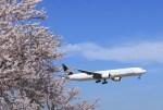 hkg blue skyさんが、成田国際空港で撮影したエバー航空 777-35E/ERの航空フォト(飛行機 写真・画像)