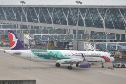 Korean Air KEさんが、上海浦東国際空港で撮影したマカオ航空 A321-231の航空フォト(飛行機 写真・画像)