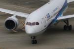 マルさんが、羽田空港で撮影した全日空 787-9の航空フォト(写真)