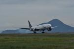 kumagorouさんが、松山空港で撮影した全日空 777-281の航空フォト(写真)