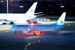 tsubasa0624さんが、羽田空港で撮影した大韓航空 737-8Q8の航空フォト(飛行機 写真・画像)