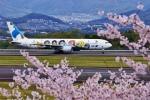 うらしまさんが、高松空港で撮影した全日空 767-381の航空フォト(写真)