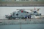 500さんが、晴海客船ターミナルで撮影したイギリス海軍 WG-13 Lynx HMA.8の航空フォト(写真)