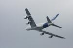 羽田空港 - Tokyo International Airport [HND/RJTT]で撮影されたエアバス - Airbus Industrie [AIB]の航空機写真