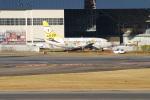 kix-itmさんが、伊丹空港で撮影したAIR DO 737-54Kの航空フォト(飛行機 写真・画像)