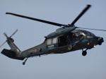 mumbo29さんが、名古屋飛行場で撮影した航空自衛隊 UH-60Jの航空フォト(写真)