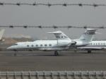 kouta@itmさんが、羽田空港で撮影した国土交通省 航空局 G-IV Gulfstream IVの航空フォト(写真)