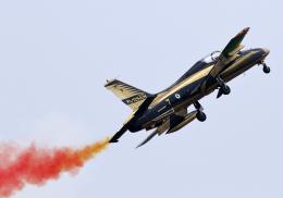 RA-86141さんが、ランカウイ国際空港で撮影したアラブ首長国連邦空軍 MB-339NATの航空フォト(飛行機 写真・画像)