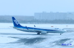 SNAKEさんが、新千歳空港で撮影した全日空 737-881の航空フォト(写真)