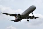 tsubasa0624さんが、成田国際空港で撮影したアシアナ航空 A321-231の航空フォト(飛行機 写真・画像)