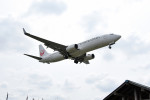 tsubasa0624さんが、成田国際空港で撮影した日本航空 737-846の航空フォト(写真)