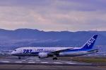 nahatsuki1415さんが、伊丹空港で撮影した全日空 787-8 Dreamlinerの航空フォト(写真)