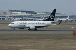 北の熊さんが、新千歳空港で撮影したユナイテッド航空 737-724の航空フォト(写真)