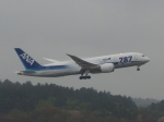aquaさんが、成田国際空港で撮影した全日空 787-8 Dreamlinerの航空フォト(飛行機 写真・画像)