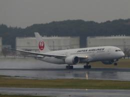 aquaさんが、成田国際空港で撮影した日本航空 787-8 Dreamlinerの航空フォト(写真)