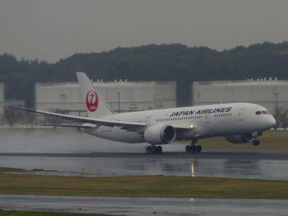 aquaさんの日本航空 Boeing 787-8 Dreamliner (JA826J) 航空フォト