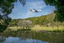 mameshibaさんが、成田国際空港で撮影したルフトハンザドイツ航空 747-430の航空フォト(写真)