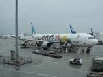 シフォンさんが、那覇空港で撮影した全日空 767-381の航空フォト(飛行機 写真・画像)