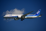 Blue Dreamさんが、羽田空港で撮影した全日空 787-9の航空フォト(写真)