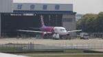 ぱいかさんが、伊丹空港で撮影したピーチ A320-214の航空フォト(写真)
