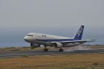 kumagorouさんが、八丈島空港で撮影した全日空 A320-211の航空フォト(飛行機 写真・画像)