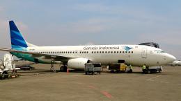 tsubasa0624さんが、スカルノハッタ国際空港で撮影したガルーダ・インドネシア航空 737-8U3の航空フォト(写真)