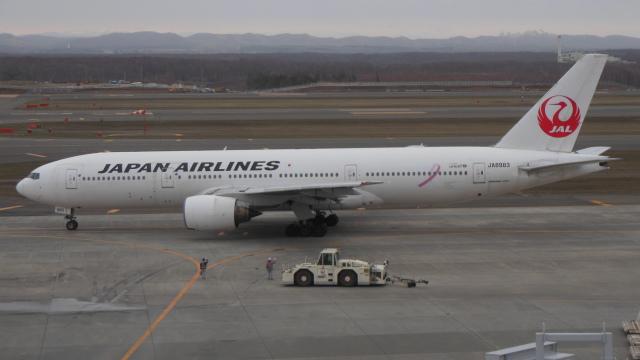 ゴンタさんが、新千歳空港で撮影した日本航空 777-246の航空フォト(飛行機 写真・画像)
