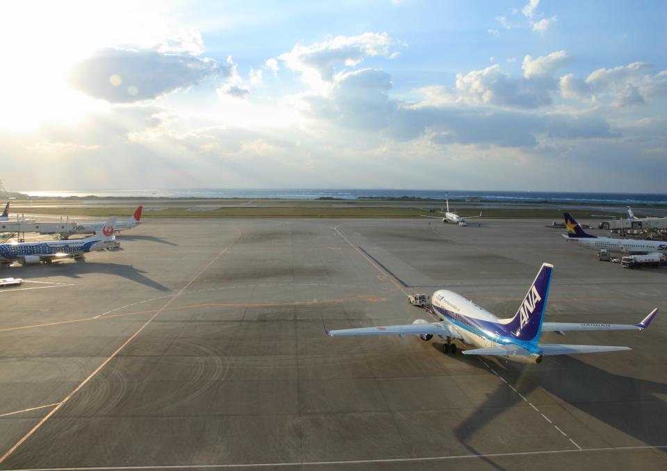 さんたまるたさんの全日空 Boeing 737-700 (JA06AN) 航空フォト