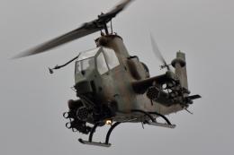 ティーガーさんが、板妻駐屯地で撮影した陸上自衛隊 AH-1Sの航空フォト(飛行機 写真・画像)