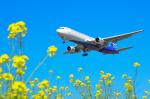 パンダさんが、成田国際空港で撮影したアジア・アトランティック・エアラインズ 767-383/ERの航空フォト(飛行機 写真・画像)