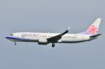 タヌキさんが、台湾桃園国際空港で撮影したチャイナエアライン 737-809の航空フォト(飛行機 写真・画像)