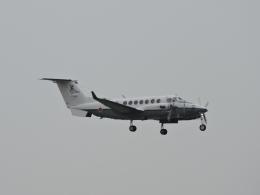 わたくんさんが、福岡空港で撮影した陸上自衛隊 LR-2の航空フォト(写真)